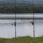 La pescuit pe Dunare. Izvoru frumos, Mehedinti.