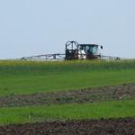 O lupta castigata in razboiul contra pesticidelor neonicotinoide