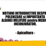 Curs introductiv despre polenizare si albine!